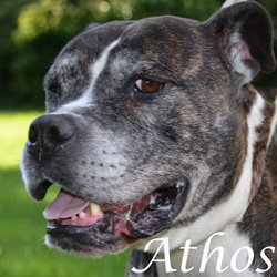 Athos - Paris