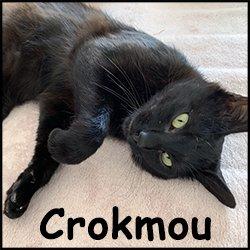 Crokmou