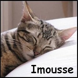 Imousse