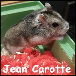 Jean Carotte
