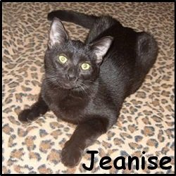 Jeanise