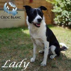 Lady_3_x250