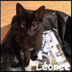 Leonce