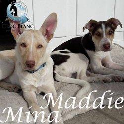 Maddie et Mina