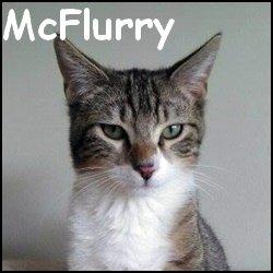 Mcflurry