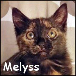 Melyss