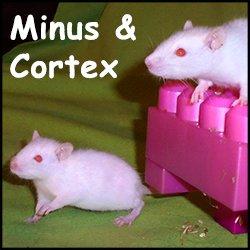 Minus Cortex