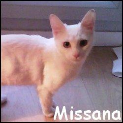 Missana