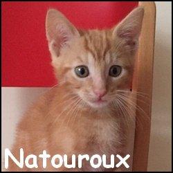 Natouroux