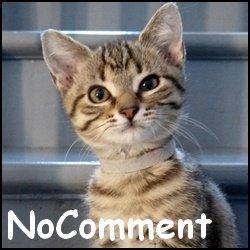 Nocomment