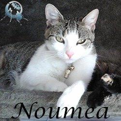 noumea