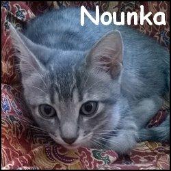 Nounka