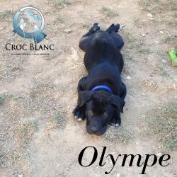 Olympe1