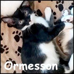 Ormesson