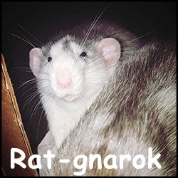 Rat-gnarok