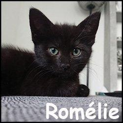 Romélie