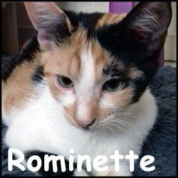 Rominette