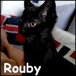 Rouby