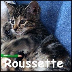 Roussette