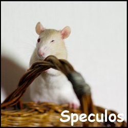 Speculos