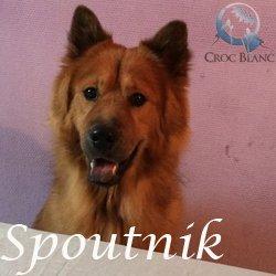 Spoutnik2