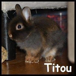Titou