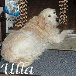 Ulla2