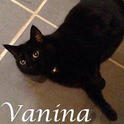 Vanina