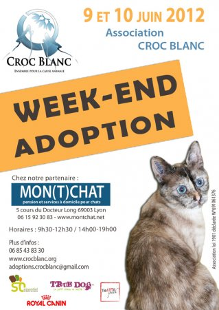 week-end adoption